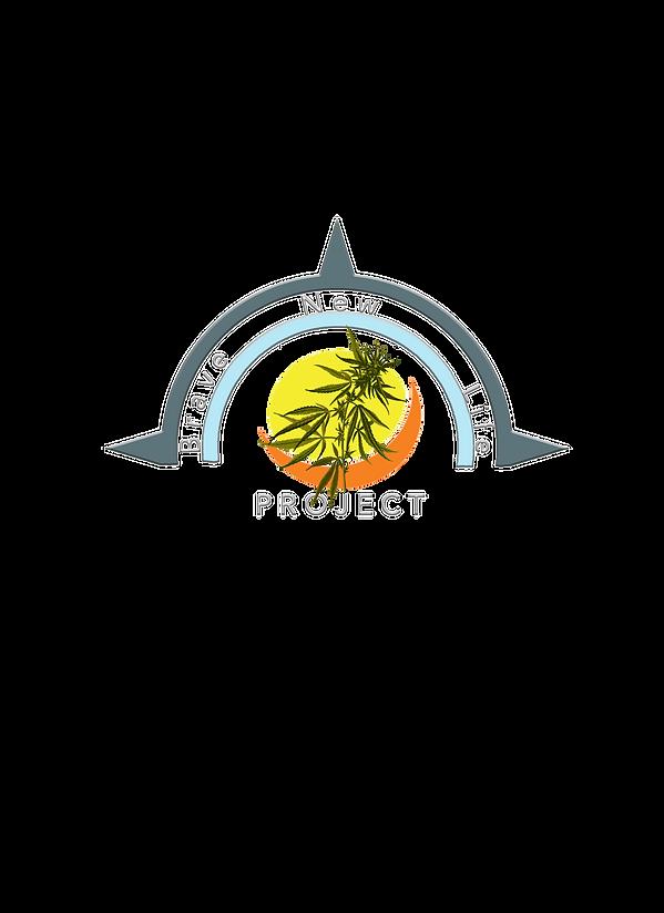BNLP Design Shirt 1.png