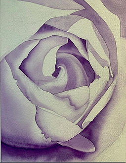 Laura Roberts day 1 Red Rose.jpg