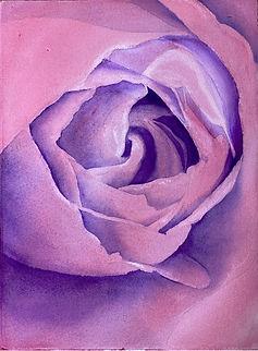 Chaitanya Alli day2 Red Rose.jpg