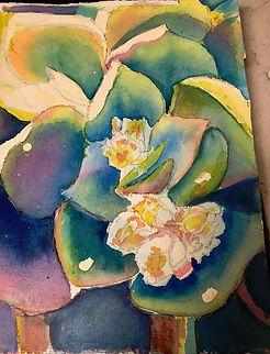 Martha Bredwell day 2 succulent.jpg