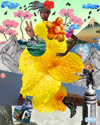 Lorem Ipsum Funk - IV.jpg