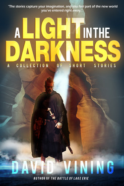 A Light In The Darkness Book Cover v2