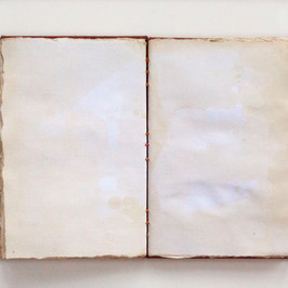 Bontanical Journal Stained Pages