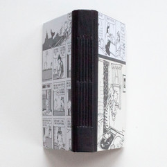 Clavin and Hobbes Journal