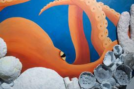 Octopus Eye Detail