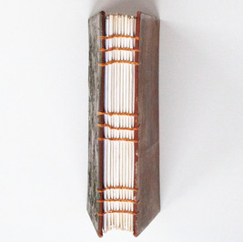 Bontanical Journal Binding