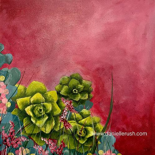 A Bouquet of Succulents