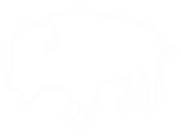 white buffalo patch.png