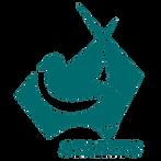 STARTTS logo -transparent.png