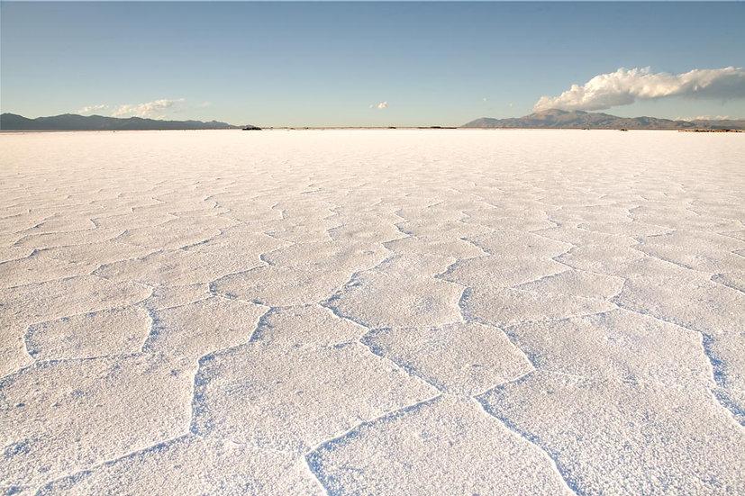 SALT FLATS 4 - SALTA