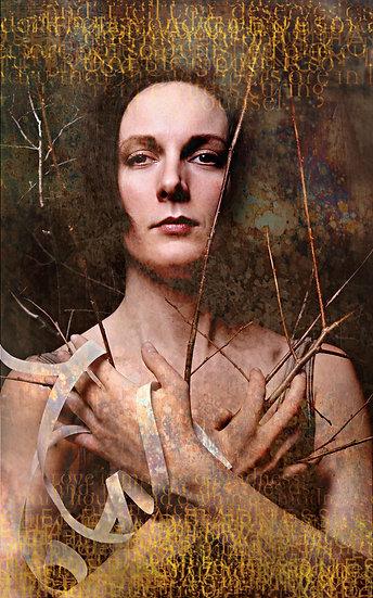 ACTRESS CATHERINE TAYLOR-WILLIAMS