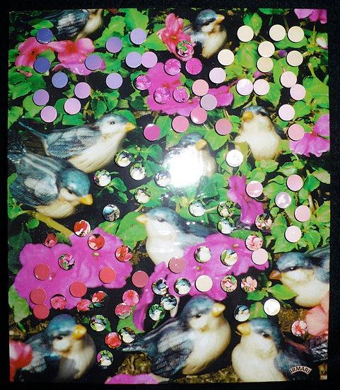 Marietta's Birds