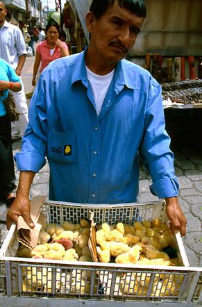 SohnCassandra_Market Ecuador.jpg