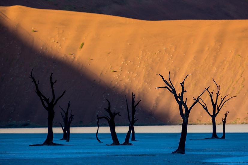 SOSSUSVLEI #36 (NAMIBIA)