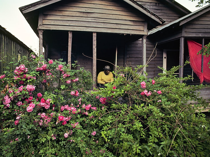 SHOTGUN HOUSE GARDEN, HELENA, ARKANSAS 1983