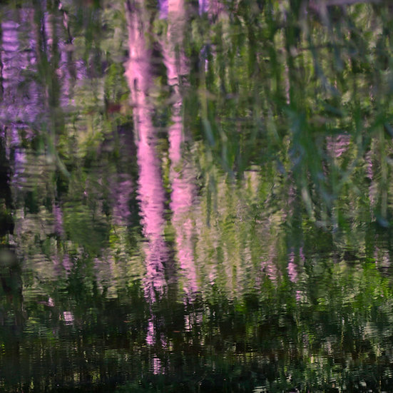 HOSMER POND MONET
