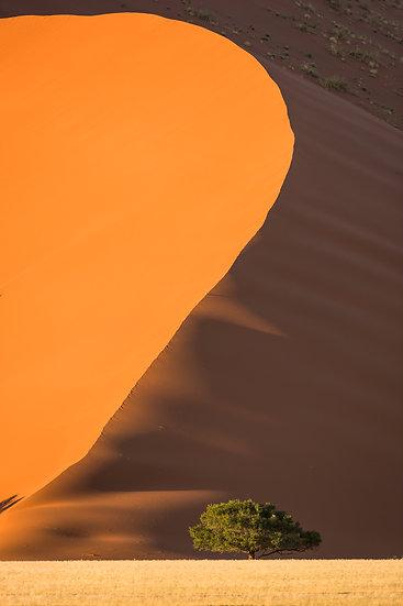 SOSSUSVLEI #27 (NAMIBIA)