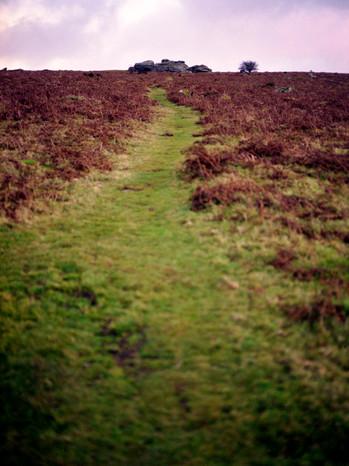 Dartmoor 4.jpg