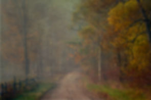 Tyringham country road in fog.sized.jpg