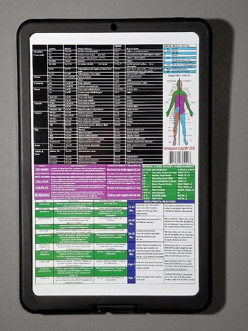 Physical and Occupational Therapy Storage Clipboard