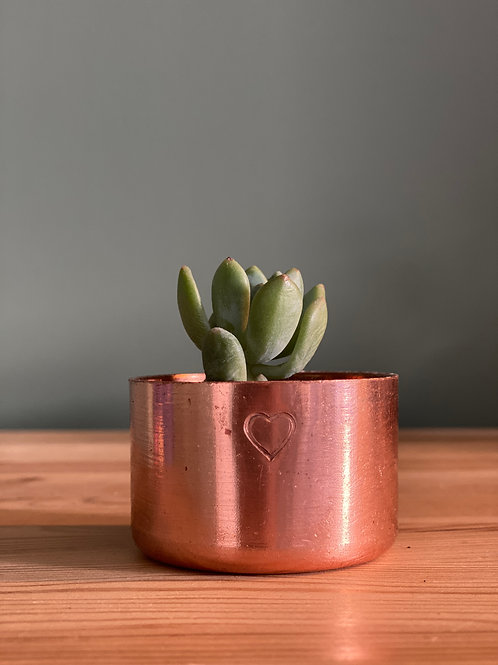 Copper Pot Planter