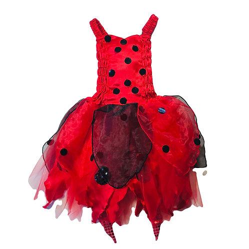 Ladybug Fairy Dress