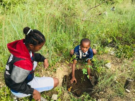 Journée des écoles : sensibilisation à l'environnement
