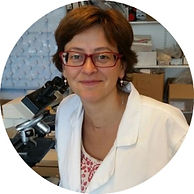 Native_Scientist_about_Ana_Rubio_Araiz.j