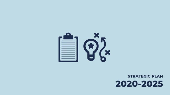 The Native Scientist Strategic Plan 2020-2025