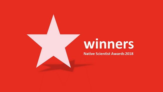 Pupils in the Netherlands and the UK win Native Awards 2018