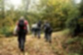 Günübirlik Altıoluk Yaylası Trekking Turu