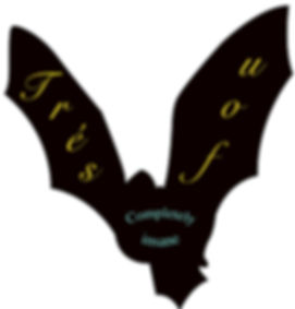 Bat website design_edited.jpg