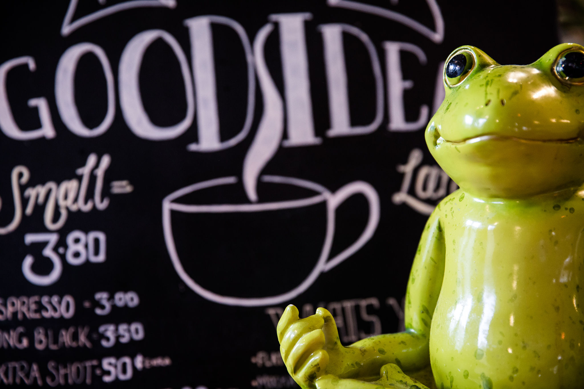 Pickled Frog - Hobart backpackers Tasmania