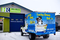 Lucky Dawg Salon