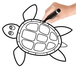 How-to-Draw-a-Turtle-step-by-step-tutori