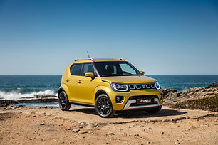 IGNIS_gold-front-3.jpg