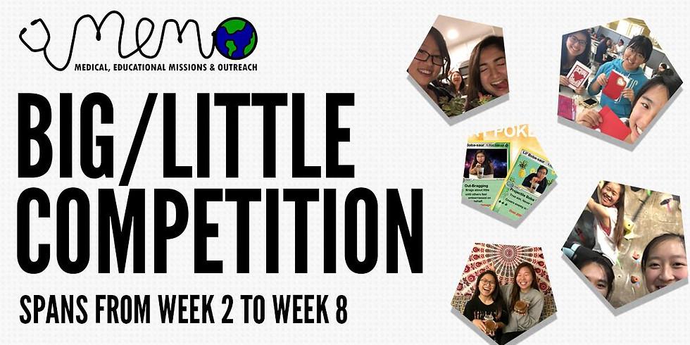 U.C.S.D. Big & Little Competition