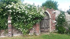 Kym Valley gardens, A Redwiood Stone Gar