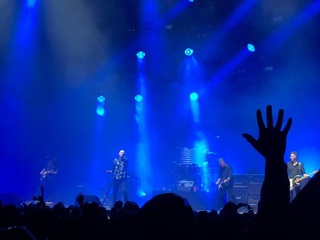 MIDNIGHT OIL LIVE: REVIEW