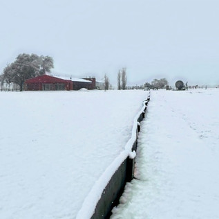 Postales del polo cordobés, que amaneció bajo la nieve!