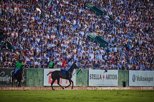 Let there be polo, Palermo está de vuelta!