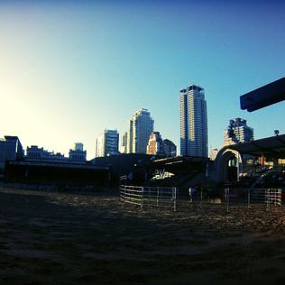 Expo Rural: el campo en la Ciudad