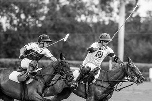 90 fotos de Palm Beach Equine en la final de la Ylvisaker Cup