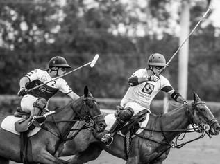 90 fotos de Palm Beach Equine en la final de la Ylvisaker Cup