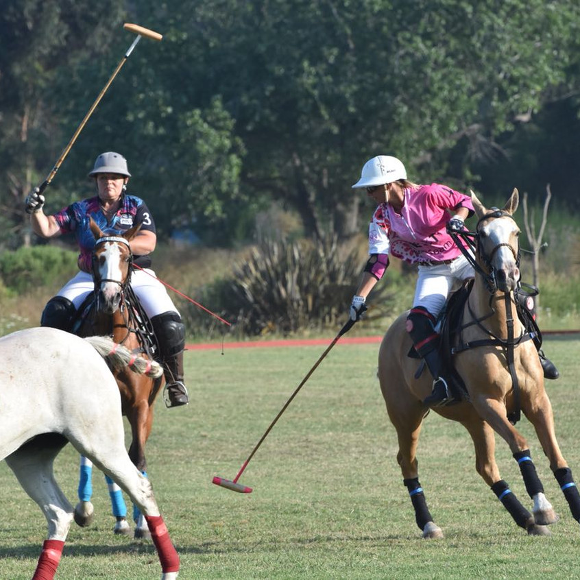 Copa Lunita Polo Fem 2018-01-23 at 23.07.33