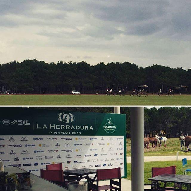 Todos los fines de semana de enero habrá torneos de #polo en #LaHerraduraPinamar organizado por _laspalmeraspolo #PoloArgentino #PrensaPolo_