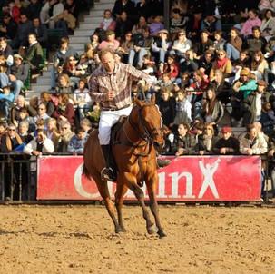 ¿Cómo se evalúa un caballo de polo?