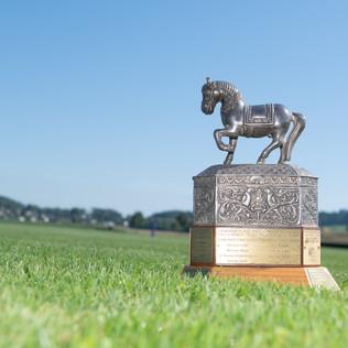 Se viene el  Swiss Medium Goal Polo Championship en el Polo Park Zurich