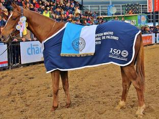 Variada actividad de Polo Argentino en La Rural