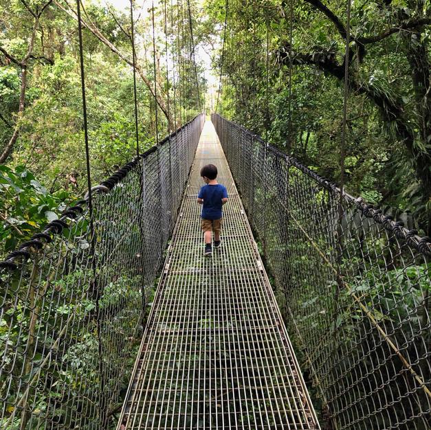Mistico Hanging Bridges